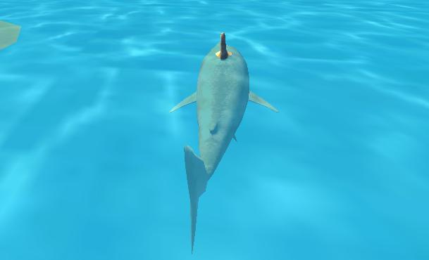 2 Kişilik Köpekbalığı 3D