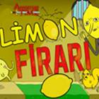Adventure Time Limon Firari