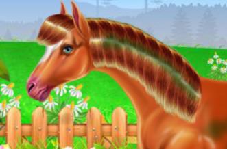 At Bakımı ve Ata Binme