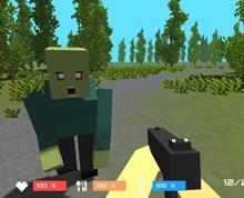 Minecraft Zombi Avı 3D