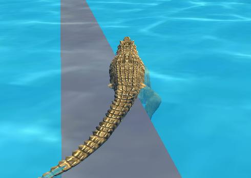 Timsah Simülasyonu